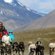 Dogsledding on Wheels-Svalbard