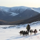 Expedition to the cabin among glaciers: 3 days hiking adventure with dogs - Arctic Husky Travellers
